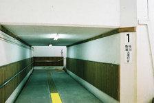 Photo20080127_no07_2