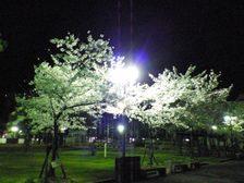 Photo20070406_no01