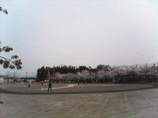 Photo20070408_no02
