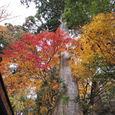 Photo20081130_no24