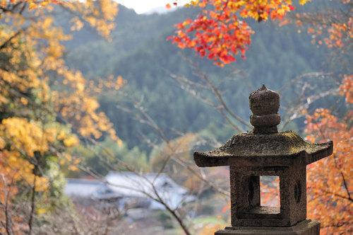 Photo20081130_no17
